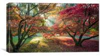 Rising Sun, Canvas Print