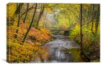 Holcombe Brook, Canvas Print