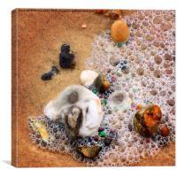 Pebbles and sea foam bubbles, Canvas Print