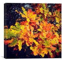 Autumn leaves shades and colours, Canvas Print