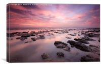 Pink Sea Pools, Canvas Print