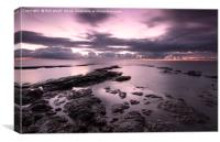 Purple Rise at the Naze, Canvas Print