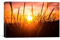 Sunset., Canvas Print