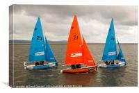 Synchronised Sailing, Canvas Print