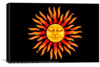 Sunshine , Canvas Print