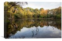 Roodee Mere, Canvas Print