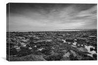 Pausing on the causeway, Canvas Print