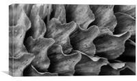 Waves, Canvas Print