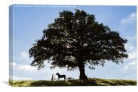 Bride & Horse, Canvas Print