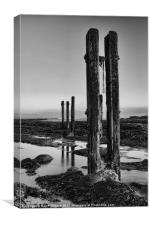Old Groynes at Whitley Bay, Canvas Print