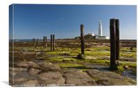Old Posts at St Marys, Canvas Print