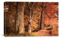 Ousbrough Woods(Colour Textured), Canvas Print