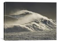 Sea Horses, Canvas Print