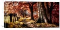 Ousbrough Woods , Canvas Print
