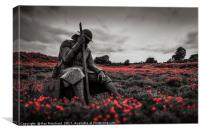 Tommy 1101 in Poppy Field, Canvas Print