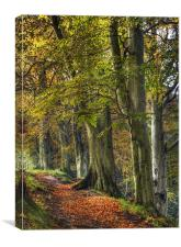 Autumn At Ousbrough, Canvas Print