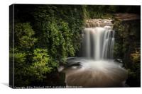 Waterfall at Jesmond Dene, Canvas Print