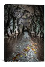 Entrance to Cathedral Cavern, Canvas Print