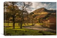 Buttermere Trees, Canvas Print