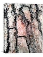 Bark, Canvas Print