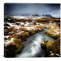 Autumn Rush, Trotternish, Isle of Skye, Canvas Print