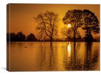 Golden Sunrise , Canvas Print