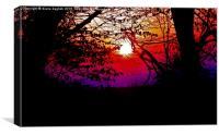 sunset boulevard , Canvas Print