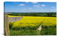 Footpath Sign to pathway through rapefield , Canvas Print