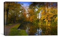 Basingstoke Canal in Autumn , Canvas Print