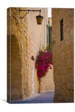 Street sceane Mdina,Malta, Canvas Print