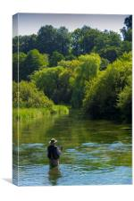 Fly Fishing ,River Itchen,Hampshire England, Canvas Print