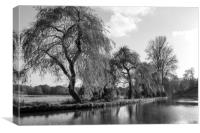 The River Wey,Guildford, Surrey,England , Canvas Print