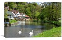 The River Wey , Guildford Surrey, Canvas Print