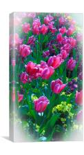 Pink Tulips & Spring Flowers , Canvas Print