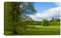 Grounds of Chawton House Library,Hampshire, Canvas Print