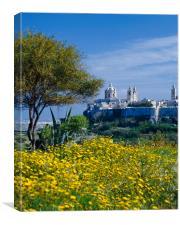 View to Mdiana, Malta, Canvas Print