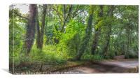 Lush Green Manor Park, Canvas Print