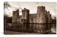 Bodiam Castle with the ducks , Canvas Print