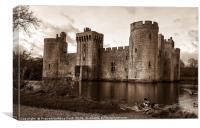 Bodiam Castle with the ducks , Canvas Print