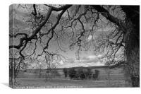 Norfolk fields, Canvas Print