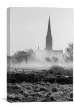 View of Salisbury Cathedral Mono, Canvas Print