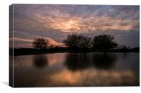New Forest Sunset, Canvas Print