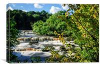 Aysgarth Falls, Canvas Print