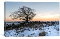Winter in Yorkshire, Canvas Print