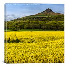 Roseberry Topping , Canvas Print