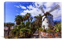 El Molino Blanco - The White Windmill, Canvas Print