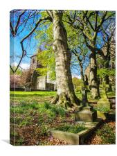 Graves in the spring, Canvas Print