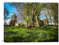 Springtime amongst the graves , Canvas Print