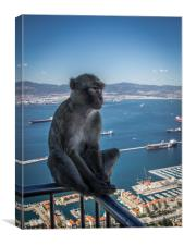 Feeling Blue In Gibraltar, Canvas Print