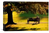 Lazy Day At Hampstead Heath, Canvas Print